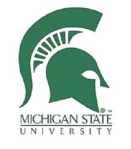 MICHIGAN STATE UNIVERSITY LOGO SPARTAN FOOTBALL